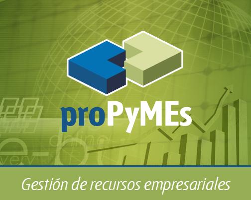 pro-PyMEs Gestión de Recursos Empresariales